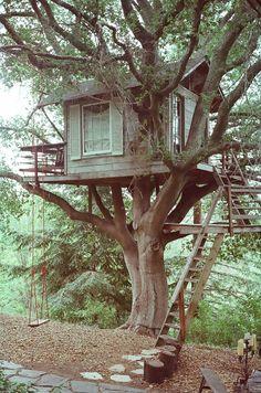 treehuts:      by Aleisha Zoumaras    Treehuts / Smooth Yeti