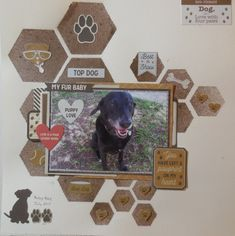 Dog Scrapbook Layouts, Scrapbook Templates, My Scrapbook, Pet Dogs, Pets, Photo Layouts, Baby Puppies, Layout Inspiration, Hello Everyone