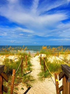 Where to Stay in Cape San Blas: Barrier Dunes