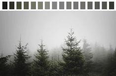 gif green colors transparent color palette dark green dark grey ...