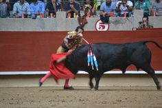 http://www.taurophilos.com/2014/08/feria-de-la-peregrina-domingo-10-agosto/