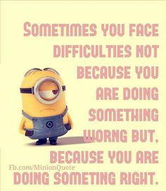 Today Funny Minions pictures