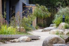 Photograph portfolio of native gardens and landscapes designed and built by Australian Landscape designer Sam Cox. Bush Garden, Dry Garden, Side Garden, Garden Art, Australian Garden Design, Australian Native Garden, Modern Landscaping, Backyard Landscaping, Landscaping Ideas