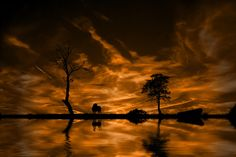 Photos of Day: Sunset Silhouettes and Landscapes - http://dashburst.com/pic/sunset-silhouettes-landscapes/