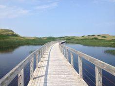 Découvrir l'Île-du-Prince-Édouard Prince Edward Island, Nova Scotia, Adventure Time, Backdrops, Road Trip, Places, Nature, Travel, Judges