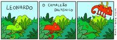 Leonardo, el camaleón daltónico.