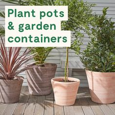 Container gardening and pots can be the only way to decorate your outside space. We've created this board to provide you with plant inspiration for balconies, small spaces, back yards and gardens. #outdoorgarden #gardenpot