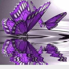 Diamond Painting Animals Purple Butterfly DIY Diamond Paintings Diamant Schilderen Coloring By Numbers Mosaic Drawings Purple Love, All Things Purple, Shades Of Purple, Purple Thoughts, Purple Stuff, Purple Swag, Purple Punch, Bright Purple, Butterfly Kisses