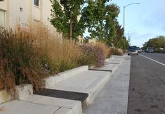 rain garden portland - Pesquisa Google Sponge City, Pocket Park, Water Management, Rain Garden, Urban Planning, Pavement, Water Features, Landscape Architecture, Sustainability
