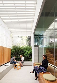 The Vertical garden against the crisp white and warm timber room creates an open and airy space without being too clinical