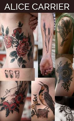 Alice Carrier in Portland, Oregon | The 13 Coolest Tattoo Artists In The World -- If you want the sort of nature tattoo that looks straight out of a weather-worn vintage textbook, you might want to consider a trip to Portland to see Alice.