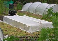 Low tent using pvc pipe. Includes instructions!