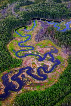 Northern Alberta, Canada. By Dristis-Mudra.
