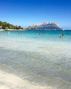 Remembering summer, the crystal water of Porto Istana, Sardinia. On background the Island of Tavolara  repost from @elenalamazz -  Era solo un arrivederci  @bumboom76 - #summer #mare #sea #spiaggia #beach #praia #playa #tavolara #isola #island #isla #portoistana #olbia #costasmeralda #portocervo #portorotondo #alghero #cagliari #ryanair #mediterranean #sardegna #sardinia #italia #italy #loveitaly #iloveitaly