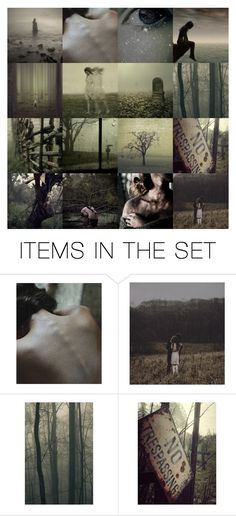 """""""No Trespassing"""" by ladomna ❤ liked on Polyvore featuring art"""