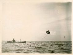 """Tarpon Fishing at Boca Grande""  From a photograph by Julian Dinnock, courtesy of the American Museum of Natural History, New York."