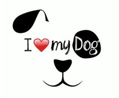 4 of them they are my world! Animal Quotes, Four Legged, Dog Treats, Pet Supplies, Pets, Pencil Art, Doggies, Angels, Sweet
