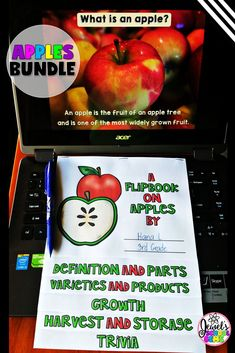 Apples Activities Bu