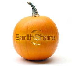EarthShare is a great resource for every day green tips Green Tips, Go Green, Autumn Decorating, Fall Decor, Halloween Make, Pumpkin, Veg Recipes, Celebrities, Oregon