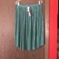 Xhilaration Reversible green/lime skirt XL w/gift Brand new Size XL reversible green/lime green pleated skirt from Xhilaration.    No rips/tears never worn I just changed my mind.   Skirt is not lined and waist is all elastic.   Material is 95% polyester, 5% spandex.  Offers accepted .  Also included is a free gift Xhilaration Skirts