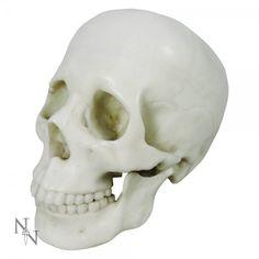 Koriste: Marmoreal Skull 20cm