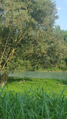 E ora ascolto il fiume