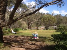 Enjoy a picnic and a paddle at Bells Rapids in Brigadoon. Kids will love discovering the tree swings over the other side of the bridge! Location: Brigadoon Suitable for: All ages Tree Swings, Stuff To Do, Things To Do, School Holidays, The Other Side, Perth, Paddle, Great Places, Swan