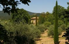 Peter Mayle's former estate in Lourmarin, South Luberon