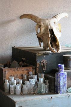 A SMALL GROUPING OF ODD BOTTLES & SKULL Bottles, Skull, Collections, Blog, Blogging, Skulls, Sugar Skull