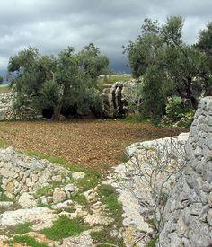 Tre grotte da ammirare nel territorio salentino | Vizionario
