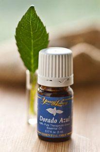 Using Dorado Azul Essential Oil