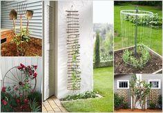 Si vous avez quelques plantes grimpantes, ils vont certainement avoir  besoin d'un treillis, alors vous pouvez facilement en fabriquer par…