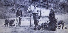 Carlos I (de Portugal) cazando en Mafra con sus Caes de Gado (Estrelas), en marzo de 1906