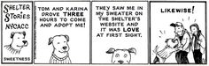More Shelter Stories from Mutts.
