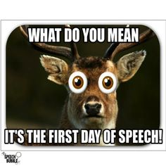 This post shares how I get through my first day of speech therapy. I share my the materials I use and the activities we do to make the first day run smoothly.
