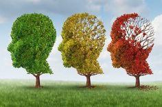 I numeri della Demenza