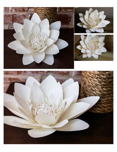 Waterlily paper flower