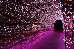 lights tunnel