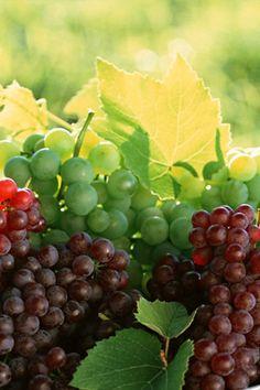 Whites & Grapes