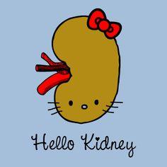 What my kidneys look like...