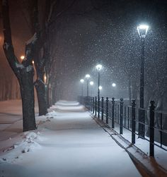 Let it snow. Let it snow :) Photographer: Aleksandr Kljuchenkow Winter Szenen, I Love Winter, Winter Night, Winter Time, Winter Christmas, Snow Night, Winter Images, Winter Photos, Winter Photography
