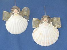 Angel Seashells