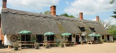 The Chequers Inn, Thompson, Thetford, Norfolk. Pet Friendly Bed and Breakfast Holiday Accommodation in England. Pet Friendly Holidays, Pet Friendly Hotels, Holiday Accommodation, Staycation, Holiday Destinations, Campsite, Norfolk, Dog Friends, Bed And Breakfast