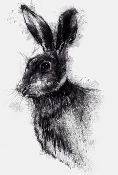 Brown hare sketch, prints available for sale on Etsy http://etsy.me/1rARc0J