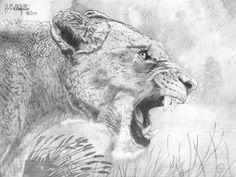 """""""She Beast"""" 12x16, graphite pencil"""
