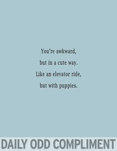 Like an elevator ride, but with puppies // dailyoddcompliment