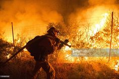 Firefighters attempt to control flames as they approach a vineyard in California's Santa Cruz Mountains early on September 27, 2016. The Loma Prieta Fire has charred more than 1,000 acres and burned multiple structures in the area. / AFP / Josh Edelson