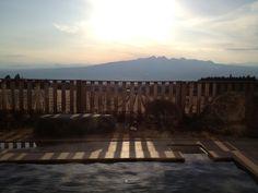 太古の海で陽を浴びる:魚の庭 <2012-02-21>