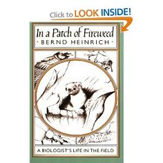In a Patch of Fireweed: A Biologist's Life in the Field: Bernd Heinrich: 9780674445512: Amazon.com: Books