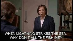 """when lighting strikes the sea, why don't all the fish die?"" Miranda Hart love her! Make Em Laugh, I Love To Laugh, Miranda Bbc, Miranda Hart Quotes, British Comedy, Comedians, The Funny, Cool Words, Humor"